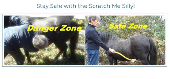 scratchMeSillySafety